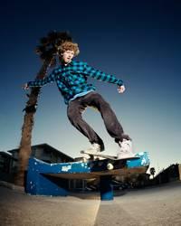 Skater unter der Palme
