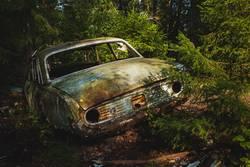 Autofriedhof im Wald