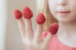 Himbeeren, die auf Mädchen-Fingern stecken