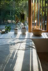 Schlafzimmer mit Pflanzen im Abendsonnenlicht