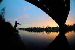 Angler im Abendrot am Blauen Wunder in Dresden