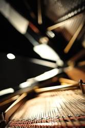 Beleuchteter Flügel von Steinway & Sons bei Konzert am Abend