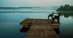 Éveil sur le lac