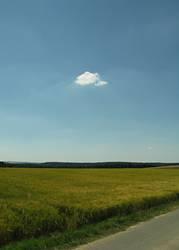 Eine Wolke stört noch keinen Sommer