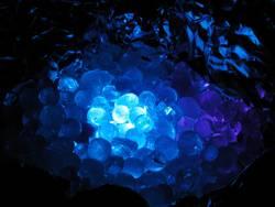 blaudings2