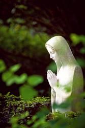 Gebet im Grünen