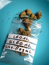 legal. illegal. scheißegal