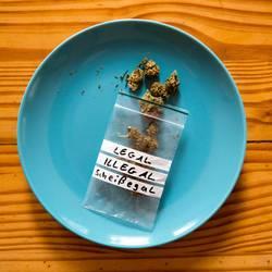 Cannabis beschäftigt ...