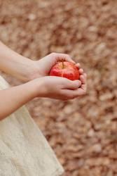 Diese Geschichte mit dem Apfel...