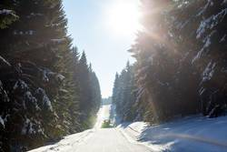Loipe im Thüringer Winterwald