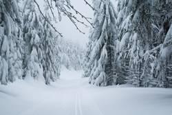 Der Winter kehrt zurück....