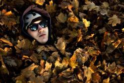 Herbstzeitblätter