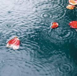 es regnet....