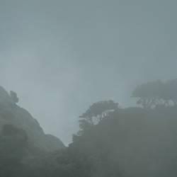 Nebel in den Bergen...
