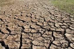 Weltschmerz | anhaltende Dürre