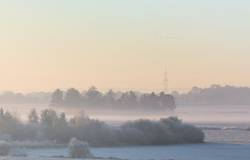nebulös | morgens im Moor