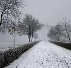 Schwarzweiße Winterromantik