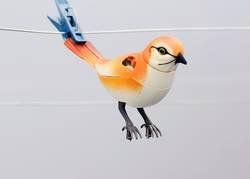gebrochener Vogel