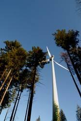 Windkraft am Roßkopf 4