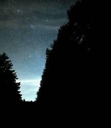 Black Forest Astro Night