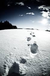 Schneeweg