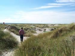 Dänischer Strand
