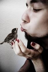 he loves birds.