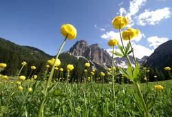 Dolomites Ladinia