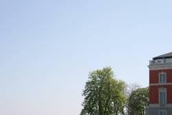 Baum | Haus
