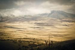 Ngorongoro Krater in Tansania (Afrika)