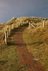 Weg in die Dünen