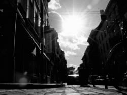 brüssel street life
