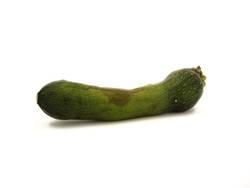 Nudel-Zucchini-Pfanne