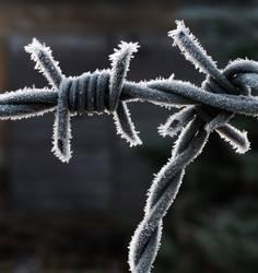 Kalte Gefangenschafft