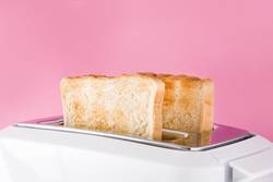 Toasted toast bread in white toaster on pink background.