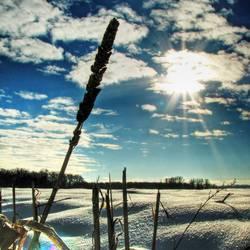 Schneelandschaft²