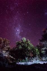 Atacama Milkyway