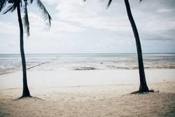 Zanzibar IV