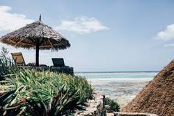 Zanzibar VIII