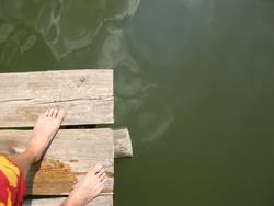 Ein Tag am See