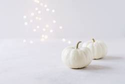 Elegante Herbstdekoration mit weißen Kürbissen und Lichterbokeh