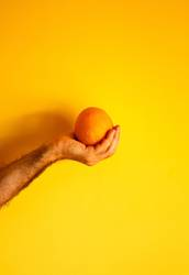 orange in hand on yellow wall