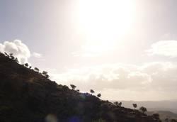 roca y sol