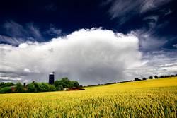 farmlandschaft