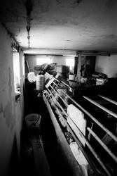 verlassener stall