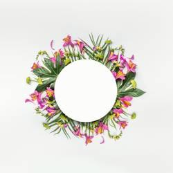 Runde Rahmen mit tropischen Blumen und Blättern