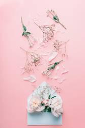 Geöffnete Brief Umschlag mit Pastellblumen und Blütenblättern