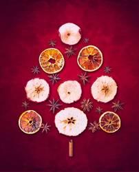 Weihnachtsbaum ausTrockenen Winter Früchte