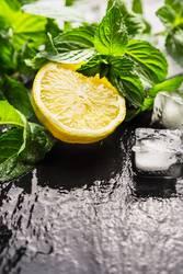 Zitrone, Minze und Eiswürfel für Limonade