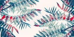 Schöne tropische Blätter